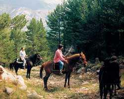 Berga horseback riding